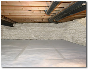 crawl space after insulation